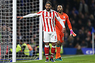 Glen Johnson of Stoke City looking on. Premier league match, Chelsea v Stoke city at Stamford Bridge in London on Saturday 31st December 2016.<br /> pic by John Patrick Fletcher, Andrew Orchard sports photography.