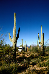 RV life: RV life at Saguaro National Monument, AZ  .Photo Copyright: Lee Foster, lee@fostertravel.com, www.fostertravel.com,  (510) 549-2202.Image rvlife203.