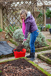 Mulching bare beds in the vegetable garden with garden compost