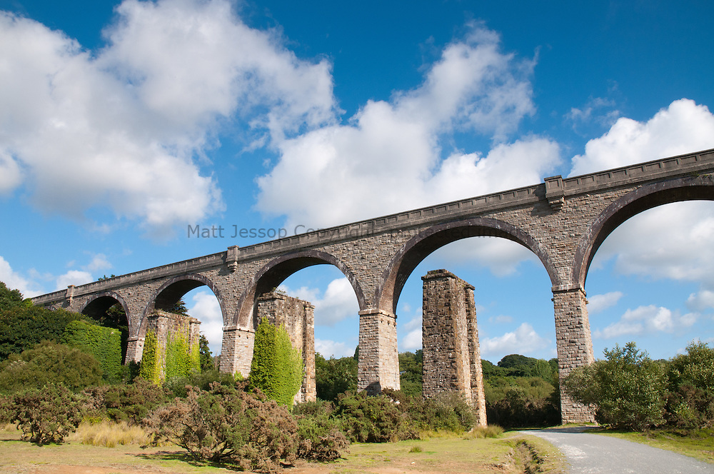 Bissoe Trail Viaduct 02