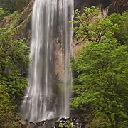 Golden Falls - Oregon