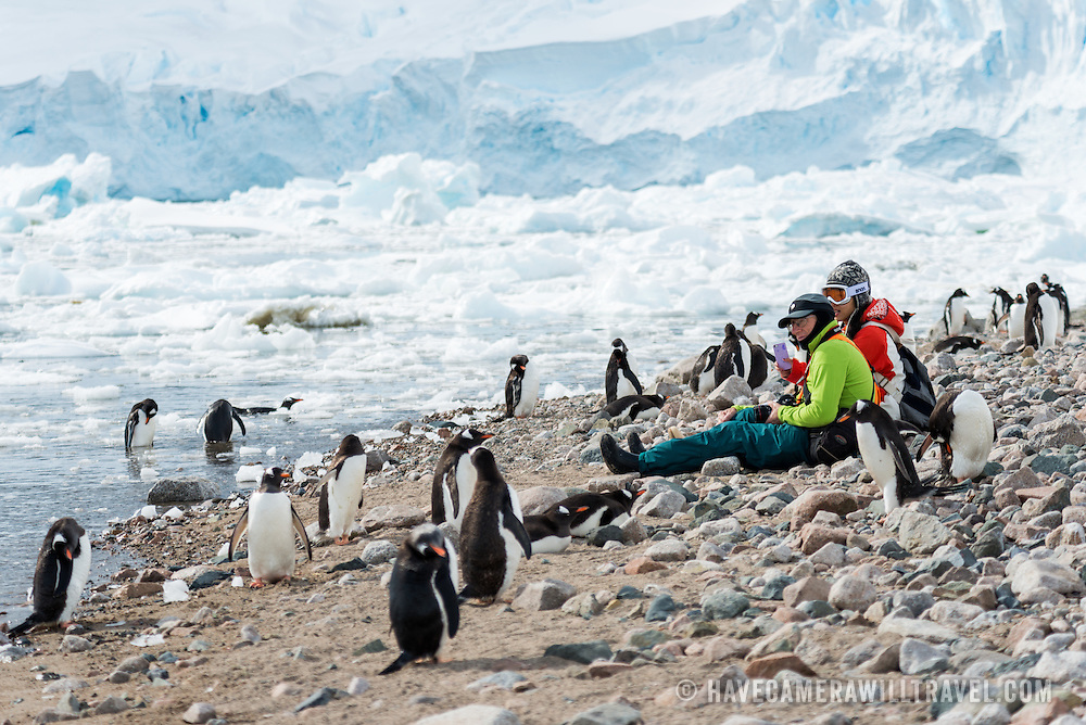 A waddle of Gentoo penguins gather around some tourists sitting on the rocky beach at Neko Harbour on the Antarctic Peninsula.