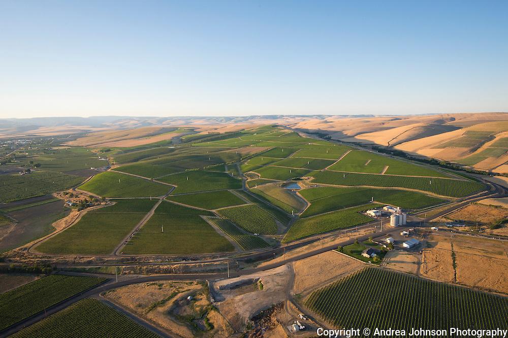 Seven Hills Vineyard aerial, Milton Freewater, Oregon