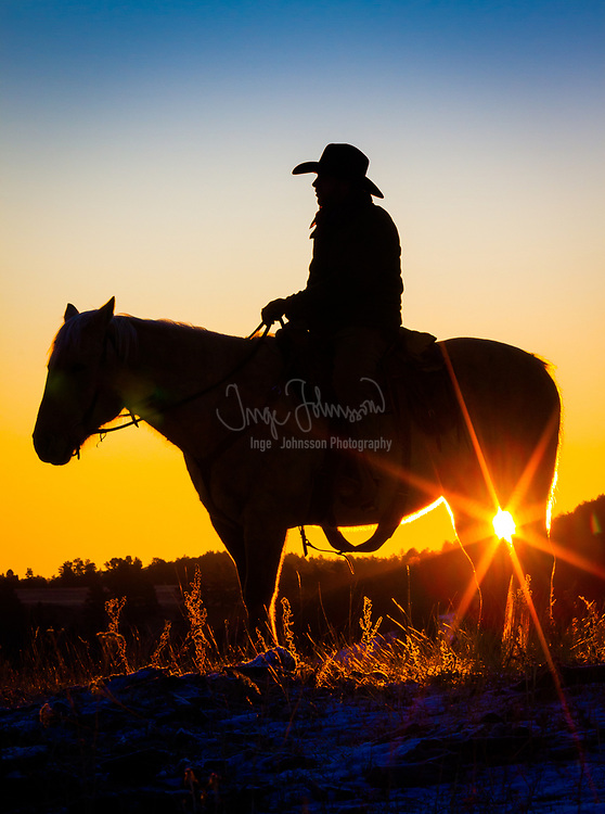 Cowboy on horse at sunrise on a ranch in Hulett, Wyoming