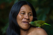 Huaorani Indian woman - Wenyena Baiwa with her pet Cobalt-winged Parakeet (Brotogeris cyanoptera). Gabaro Community. Yasuni National Park.<br /> Amazon rainforest, ECUADOR.  South America<br /> They would have taken this bird from its nest and hand reared it - even feeding it from their mouths.<br /> This Indian tribe were basically uncontacted until 1956 when missionaries from the Summer Institute of Linguistics made contact with them. However there are still some groups from the tribe that remain uncontacted.  They are known as the Tagaeri & Taromenani. Traditionally these Indians were very hostile and killed many people who tried to enter into their territory. Their territory is in the Yasuni National Park which is now also being exploited for oil.