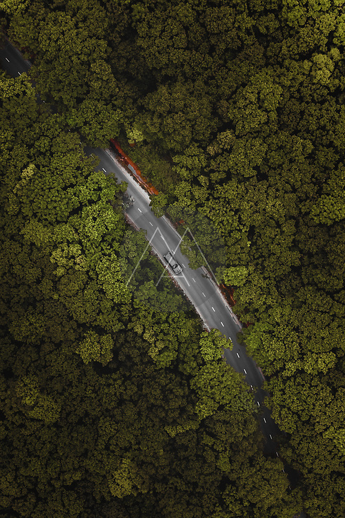 Aerial view of road deep in green forest in Vladivostok, Russia.