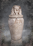 Ancient Egyptian Imesty or Amset Canopic Jar,  New Kingdom,  Egyptian Museum, Turin. White background<br /> <br /> The canopic jars were four in number, each for the safekeeping of particular human organs: the stomach, intestines, lungs, and liver, all of which, it was believed, would be needed in the afterlife. Imsety, the human-headed god representing the South, whose jar contained the liver and was protected by the goddess Isis.