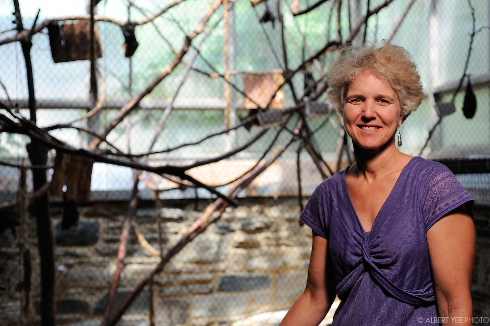 Vice President of Conservation Kim Lengel with the Rodrigues fruit bats<br /> <br /> Philadelphia Zoo<br /> <br /> Grid Magazine<br /> <br /> July 20, 2015<br /> <br /> http://www.philadelphiazoo.org/Animals/Mammals/Other-Mammals/Rodrigues-Fruit-bat.aspx