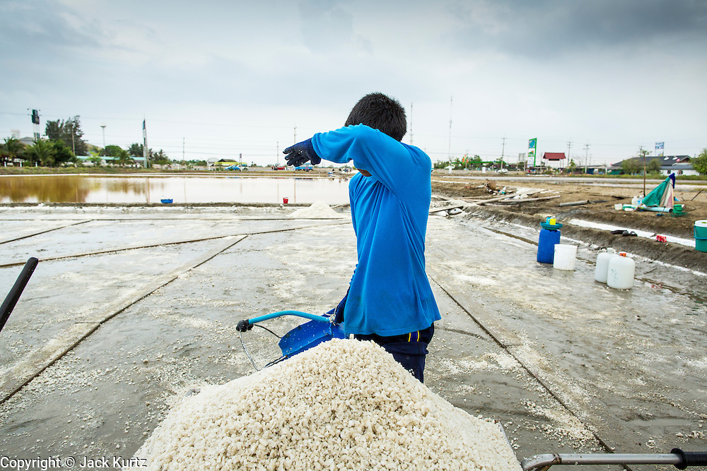 24 APRIL 2013 - SAMUT SONGKHRAM, SAMUT SONGKHRAM, THAILAND: A worker wipes his brow while harvesting salt near Samut Songkhram, Thailand. The 2013 salt harvest in Thailand and Cambodia has been impacted by unseasonably heavy rains. Normally, the salt fields are prepped for in December, January and February, when they're leveled and flooded with sea water. Salt is harvested from the fields from late February through May, as the water evaporates leaving salt behind. This year rains in December and January limited access to the fields and rain again in March and April has reduced the amount of salt available in the fields. Thai salt farmers are finishing the harvest as best they can, but the harvest in neighboring Cambodia ended 6 weeks early because of rain. Salt has traditionally been harvested in tidal basins along the coast southwest of Bangkok but industrial development in the area has reduced the amount of land available for commercial salt production and now salt is mainly harvested in a small part of Samut Songkhram province.      PHOTO BY JACK KURTZ