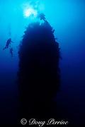Eye of the Needle pinnacle, Saba Island, Netherlands Antilles ( Eastern Caribbean Sea )