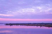 Waccamaw River Morning