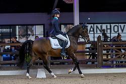 Booerewaart Kinley, BEL, Kimbel Charmeur<br /> Belgisch Kampioenschap Dressuur<br /> Azelhof - Lier 2020<br /> © Hippo Foto - Dirk Caremans<br /> 02/10/2020