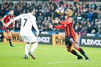 Football - 2016 / 2017 Premier League - Swansea City vs. AFC Bournemouth<br /> <br />  Junior Stanislas & Leon Britton of Swansea---, at the Liberty Stadium.<br /> <br /> COLORSPORT/WINSTON BYNORTH