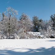 Pearce Lake, Breakheart Reservation, Saugus, Massachusetts