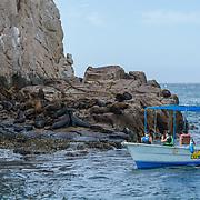 Sea lion colonyby The Arch. Cabo San Lucas. BCS. Mexico.