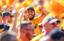 Sep 14, 2019; Morgantown, WV, USA; A West Virginia Mountaineers fan cheers during the third quarter against the North Carolina State Wolfpack at Mountaineer Field at Milan Puskar Stadium. Mandatory Credit: Ben Queen-USA TODAY Sports