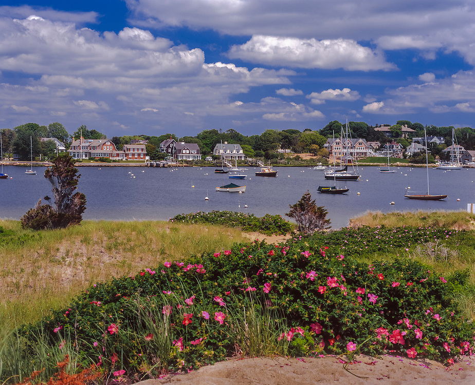 Harbor scene with boats moored, homes & roses, Watch Hill, RI
