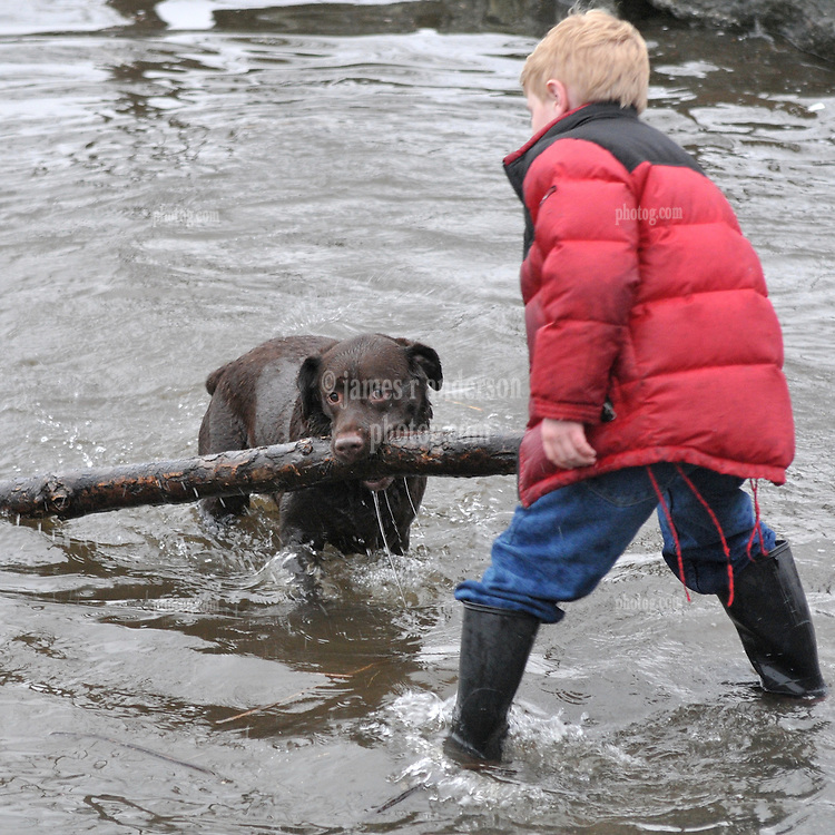 Boy with Dog fetching a log at the CT River with High Water at Deep River Landing on 30 March 2010