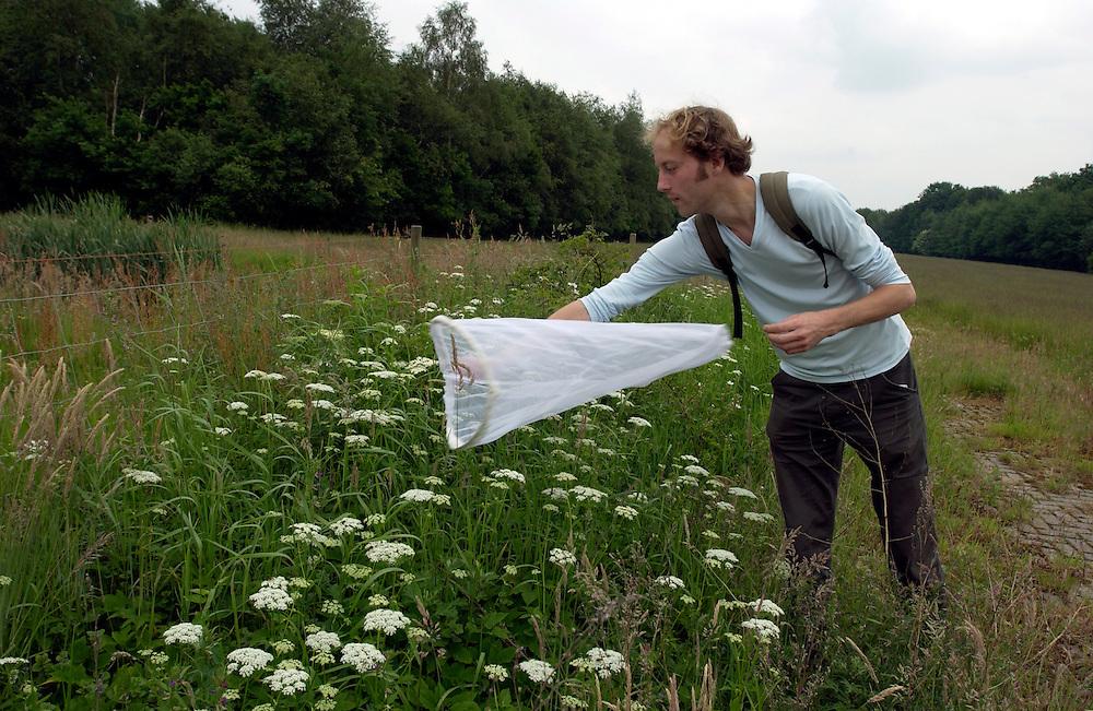 Nederland,Putten omg. 6juni 2002..Onderzoeker vangt zweefvliegjes voor onderzoek. Het verdwijnen of voorkomen van bepaalde soorten zegt iets over de stand van het milieu...Foto(c): Michiel Wijnbergh/Hollandse Hoogte.