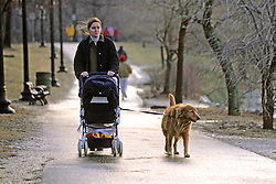 Woman & Carriage And Dog