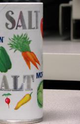 29  June  2009:  Salt Shaker