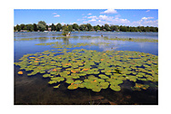 Elk Lake, Near Traverse Bay at Elk Rapids, Michigan, USA