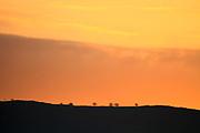 Israel, Hula Valley, Agmon lake at sunset