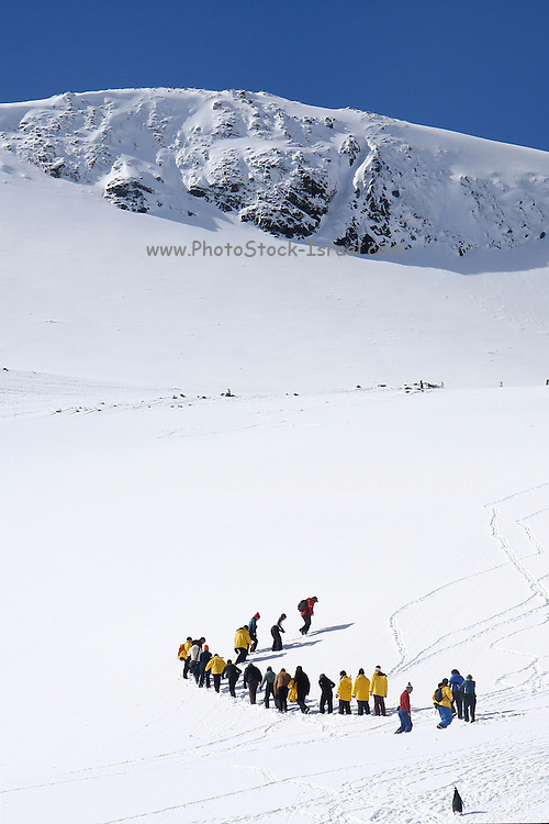 Cuverville Island or Île de Cavelier is a rocky island lying in Errera Channel between Arctowski Peninsula and the northern part of Rongé Island, off the west coast of Graham Land in Antarctica. Tourists hiking in the snow