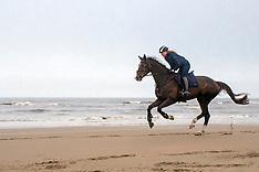 Elaine Pen on the beach 2013