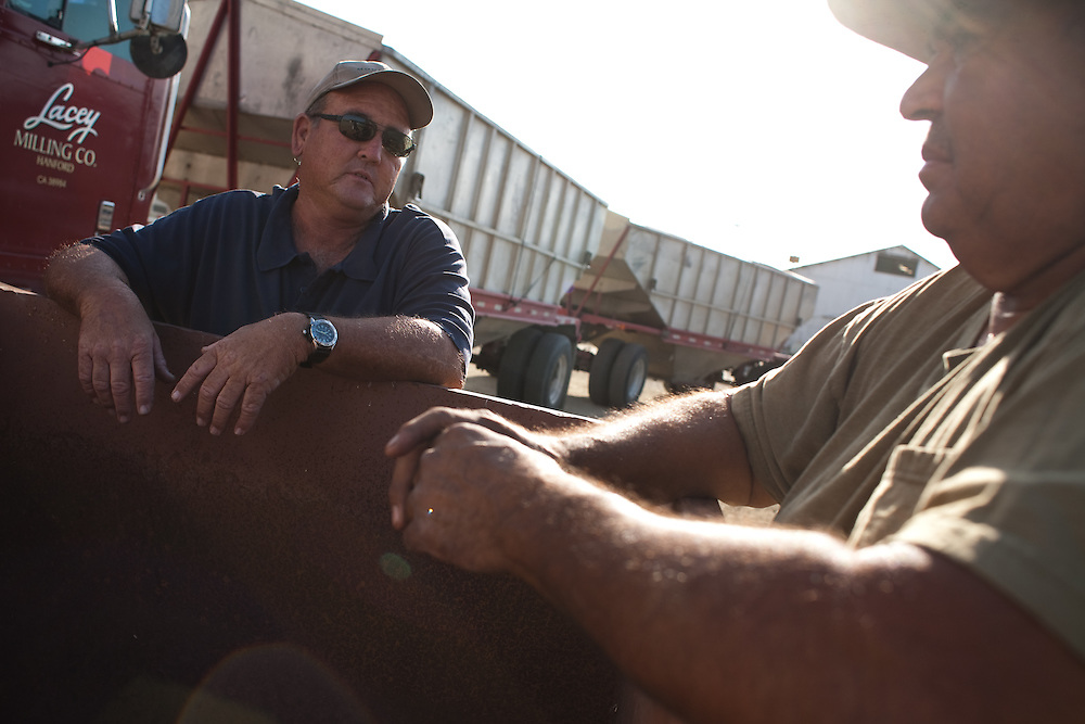 Kelly Bowers (left) and Cecilio Navarro wait while their trucks are loaded with grain at Red Rocks Ranch in Fresno County.  A continuing drought and environmental concerns have led to a shortage of irrigation water in the region, reducing farmer's yields and sending an economic shock wave through the valley economy, affecting farm labor to distribution.  Red Rocks, however, has invested heavily in water saving infrastructure.