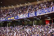 Belo Horizonte_MG, Brasil...Torcedores do Cruzeiro em partida valida pela Copa Libertadores da America 2010 em Belo Horizonte, Minas Gerais...Supporters of Cruzeiro at valid match of the Copa Libertadores da America 2010 in Belo Horizonte, Minas Gerais.... .Foto: BRUNO MAGALHAES / NITRO