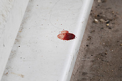 © Licensed to London News Pictures. 01/07/2020. London, UK. A blood drop stains the step at the door to a property in Monarch Parade in Mitcham, south London where a four year old girl was found seriously injured yesterday. She was taken to hospital where she later died. A woman, aged 35, is fighting for her life after she was also found suffering serious injuries inside the property. Photo credit: Peter Macdiarmid/LNP