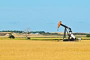 Oil pump jack and wheat<br /> Carlyle<br /> Saskatchewan<br /> Canada