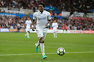 Leroy Fer of Swansea city in action. Premier league match, Swansea city v Manchester city at the Liberty Stadium in Swansea, South Wales on Saturday 24th September 2016.<br /> pic by Andrew Orchard, Andrew Orchard sports photography.