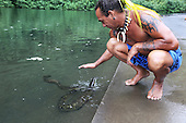 French Polynesia Tahiti Papenoo people and environment