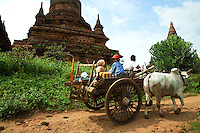 Cyclilng is often the best way to visit Bagan but it is a very big place.  However, a horse cart or ox cart is really the perfect way to discover Bagan: it is faster than the bike, you can relax, enjoy the view, take your time to feel the mood of Bagan.  With a small roof there is also some measure of protection from the sun in between temple visits, and can be lots of fun especially if traveling with children.