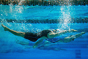 Swimmers compete in a 200 yard IM. (Courtney Pedroza / The Seattle Times)