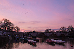 Richmond, London, February 17th 2016. XXX as dawn breaks over the River Thames. <br /> ///FOR LICENCING CONTACT: paul@pauldaveycreative.co.uk TEL:+44 (0) 7966 016 296 or +44 (0) 20 8969 6875. ©2015 Paul R Davey. All rights reserved.