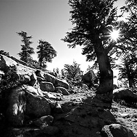 Black and White rocky path in high sierras