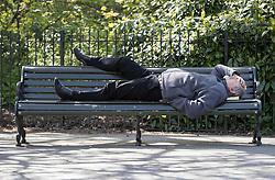 © Licensed to London News Pictures. 05/05/2016. London, UK. A visitor to Greenwich Park lies on a bench in warm sunshine. London is expecting 20 degrees of spring sunshine today.  Photo credit: Peter Macdiarmid/LNP