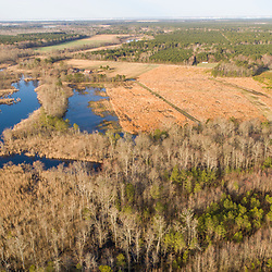Drone view of fields, forest, and wetlands in Madison, Maryland. Spring.