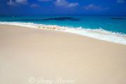 beach at Salt Cay, <br /> Turks & Caicos Islands, <br /> Western Atlantic Ocean