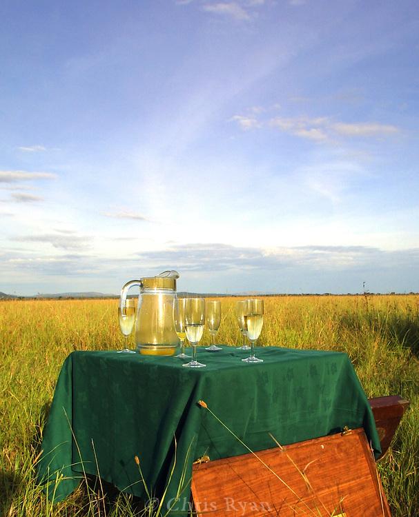 Refreshments on the Serengeti, Tanzania