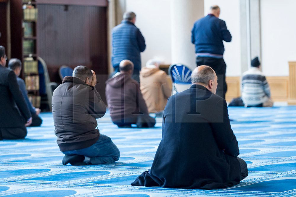 © Licensed to London News Pictures. 03/03/2019. LONDON, UK. Worshippers take part in prayers during Visit My Mosque Day at London Central Mosque near Regent's Park.  Over 150 mosques across the UK have held open days backed by the Muslim Council of Britain (MCB), to show non-Muslims more about the religion and its part in the local community.  Photo credit: Stephen Chung/LNP