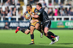 Tusi Pisi of Bristol Rugby is tackled by David Wilson of Newcastle Falcons - Rogan Thomson/JMP - 08/10/2016 - RUGBY UNION - Kingston Park - Newcastle, England - Newcastle Falcons v Bristol Rugby - Aviva Premiership.