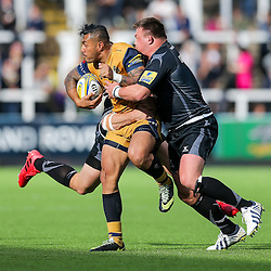 Newcastle Falcons v Bristol Rugby