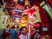 Chinese New Year - The Year of the Rooster