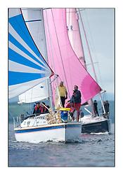 Largs Regatta Week - August 2012..Mallie, Ken McClelland, CYCA Class 4