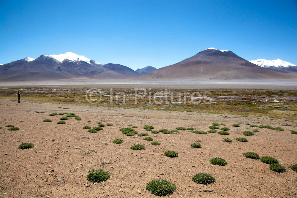Snow capped volcanoes with a person looking at them, dwarfed by their size. Salar Uyuni salt flats and Eduardo Avaroa national park, south western Bolivia