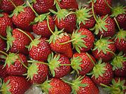 Japan, Tokyo food market fresh strawberries